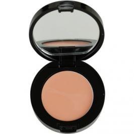 Bobbi Brown Face Make-Up korektor odcień Light Bisque 1,4 g